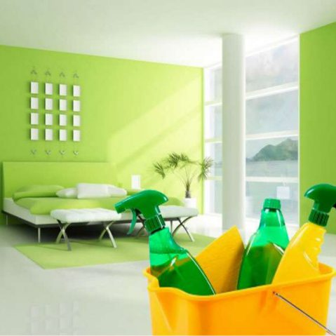 comprehensively-healthy-green-house-cleaning-2-638